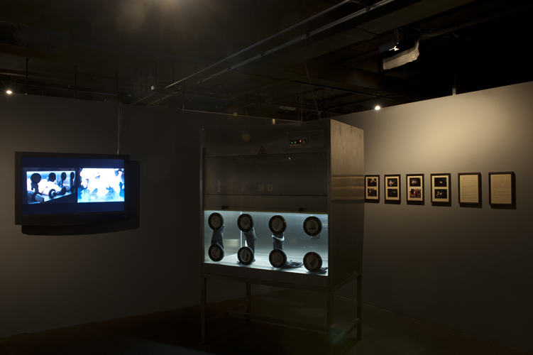 Fragments of Unspoken Thoughts, Exhibition view